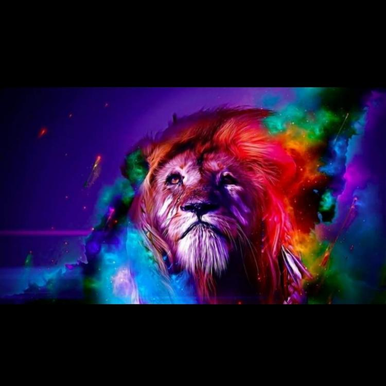 Colorful Lion Canvas 2