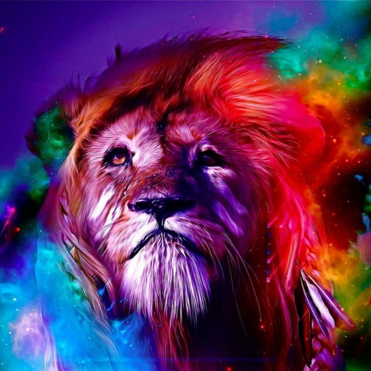 Colorful Lion Canvas 3